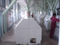 Contract Flour Mill Operation in INDIA by Dr.-Ing. N.K. Gupta Technical Consultants